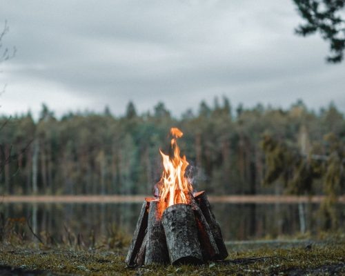 fire-in-the-wood